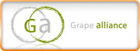 Grape alliance logo